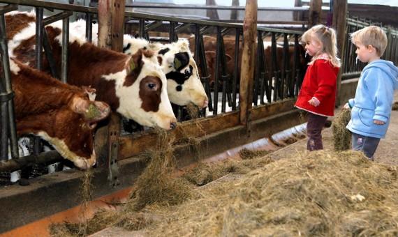 Landwirtschaft unterstützen